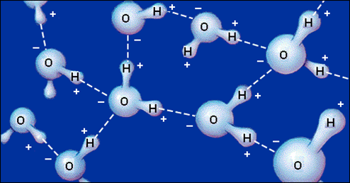 [Image: Polar_water_hydrogen_bonding.png?m=1455557629]