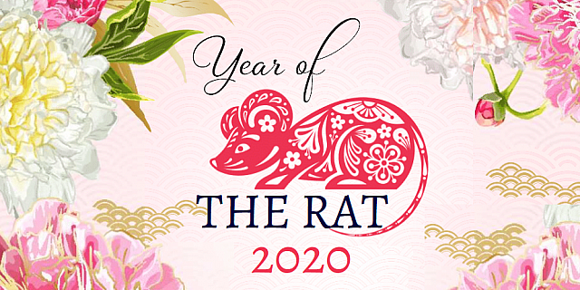 [Image: Year-of-the-rat-2020-pink-image-922x461....1577797025]